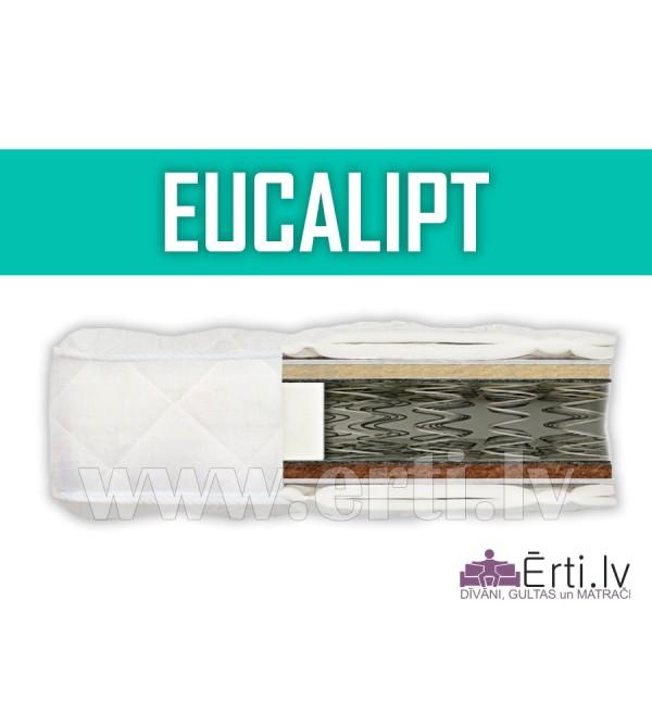 Eucalipt - Mūsdienīgs, labi ventilejamais matracis...